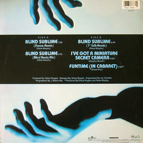 "'Blind Sublime' US 12"" rear cover"